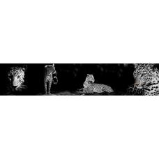 Кухонный фартук Животные №12 Леопард