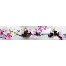 Кухонный фартук Цветы №56 Орхидеи и бабочки